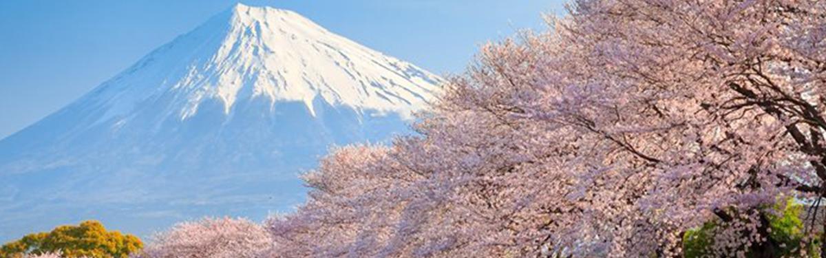 עונות ביפן
